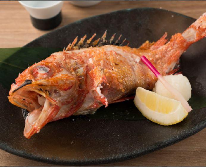 Sushi 力蔵 上野店 求人情報