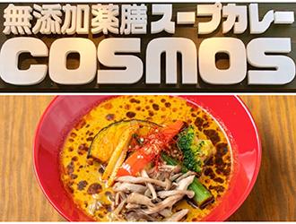 無添加薬膳スープカレー COSMOS 川崎ルフロン 求人情報