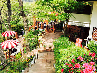Cafe Terrace 樹ガーデン