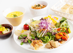 「HATAKE CAFE NIHONBASHI(仮称)」「HATAKE CAFE」 求人 【HATAKE CAFÉの一番の人気ランチメニュー】野菜の前菜を中心に盛り沢山な一皿です。