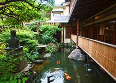 会席料理 浅草 茶寮一松 求人 会席・和カフェ・ウェディングと、和を大切に進化を続けています。