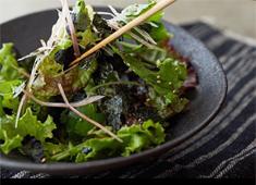 株式会社 山本山 開業準備室 求人 【料理イメージ】現在、山本山の商品を使った料理の数々を考案している真っ只中です。
