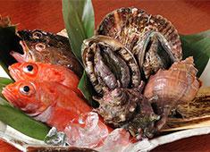 沙伽羅(さがら)、他/株式会社観世水 求人 季節感のある繊細な料理を心を込めて提供。当店は『揚げ、煮方、刺し場』等、割烹や日本料理店と同様の技術も全て磨けます