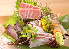 酒場 あじとよ屋 ▲高知県の宿毛市から毎日直送! 関東では珍しい魚の美味しさを「あじとよ屋」から発信していきましょう!