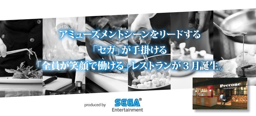 株式会社セガ エンタテインメント 求人