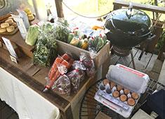 THE SOUTH(仮称)/桂ファーム 求人 愛情込めて育てた地元野菜の販売も行います。地産地消、多くの生産者を幸せにするやりがいあるお仕事です。