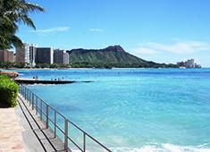 株式会社RCP(Respectable Concept Planning)/赤から,etc 求人 社員研修(社員旅行)では、ハワイを始め、海外へ行きます。非日常を感じてリフレッシュ!