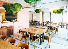 株式会社 WDI JAPAN 求人 台湾の人気レストラン「Fujin Tree(富錦樹)」新プロジェクトに関われるチャンス。