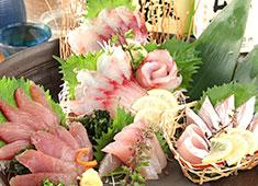 べったこグループ/株式会社 近畿商事 求人 マグロ、アンコウ、鰹など多種の魚を早くから扱えるようになります。