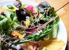 OGAWA COFFEE LABORATORY/株式会社小川珈琲クリエイツ 求人 料理には限られた農家から仕入れた野菜・食材を多用。食材に対して真摯に向き合い、素材を活かした料理を提供。