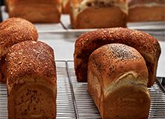 株式会社ノア企画/和楽紅屋、feve 、東京デニッシュキャラメリゼ、茶辻、久地パン 求人 焼きたてパンは地元のお客様に愛されています。オープンして間もないですが、地域に根付いているのを感じます。