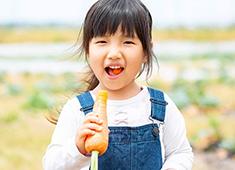 株式会社プロラボホールディングス 飲食事業部門 求人 いいカラダは、いい野菜からつくられる。金沢市の農家と提携した「プロラボファーム」で野菜を栽培しています。