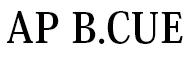 AP B.CUE 求人情報