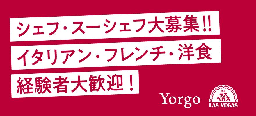 Yorgo 求人