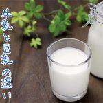 「牛乳」と「豆乳」の違いって何?