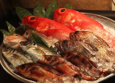 株式会社清次郎 新鮮な魚を新鮮なうちに。魚屋と居酒屋の一本化は良いこと・学べることばかり!