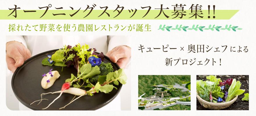キユーピーオーガニック農園レストラン(アクアイグニス多気株式会社) 求人
